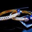 Daphne Designer Dynasty Elephant Bangles for Women - Pattren