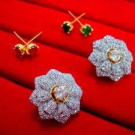 Super Saver 6in1 Changeable Zircon Earrings for Women - Zircon